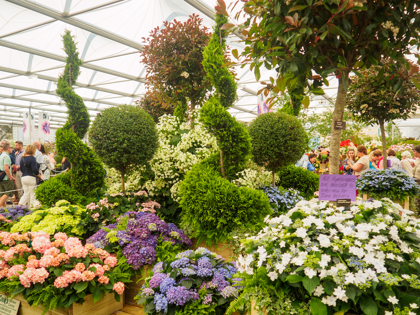 Mary Berry, Jo Whiley And Nick Knowles To Host Chelsea Flower Show 2018